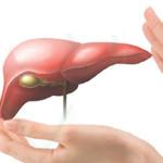 Bệnh viêm gan b lây nhiễm qua đường nào?
