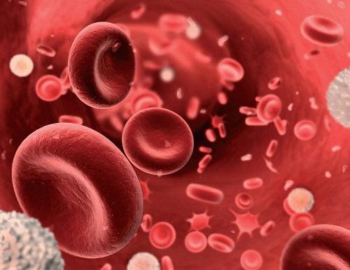 Bệnh thiếu máu có thể xảy ra khi lượng số lượng hồng cầu hay số lượng hemoglobin trong máu giảm.