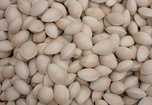 Người mắc bệnh động kinh không nên ăn nhiều hạt bạch quả vì chúng có thể gây độc cho hệ thần kinh.
