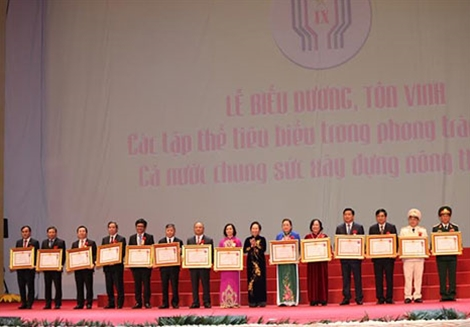 Phó Chủ tịch nước Nguyễn Thị Doan trao Huân chương Lao động hạng Nhất tặng các tập thể có thành tích xuất sắc.