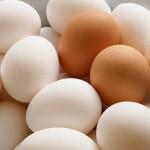 Cảnh báo bạn nên từ bỏ ngay những quan điểm sai lầm sau đây khi ăn trứng