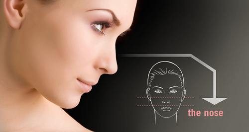 Dáng mũi là một trong những chi tiết đóng vai trò quyết định nhan sắc của bạn