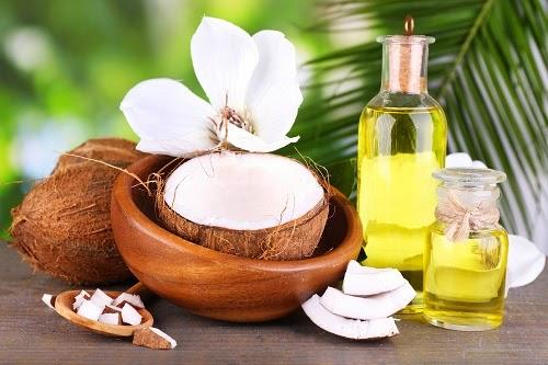 Dầu dừa cũng là nguyên liệu hữu hiệu giúp bạn đánh bay vi ô lông